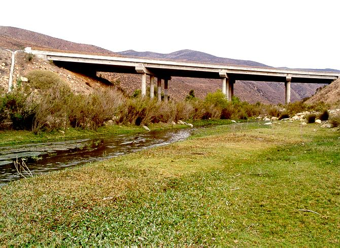 Upstream end of Arroyo Alamar rehabilitation project, at Puente Ca�on del Padre