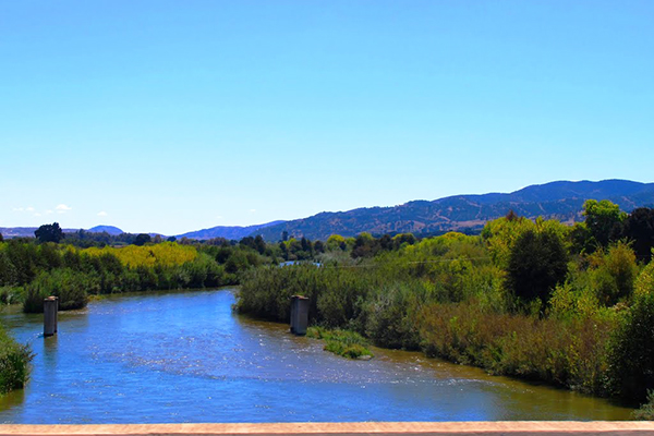 Salinas river at San Ardo.