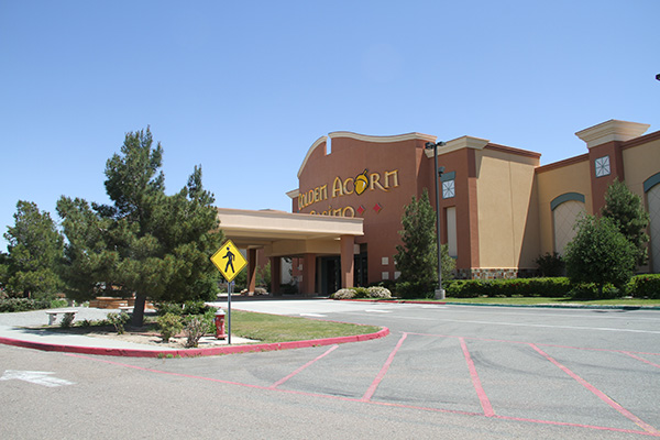 The Golden Acorn Casino