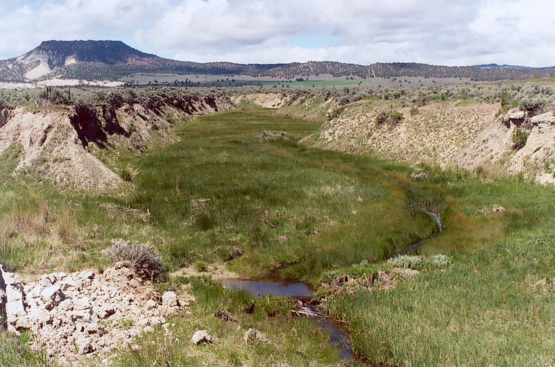 Camp Creek, near Prineville, Oregon