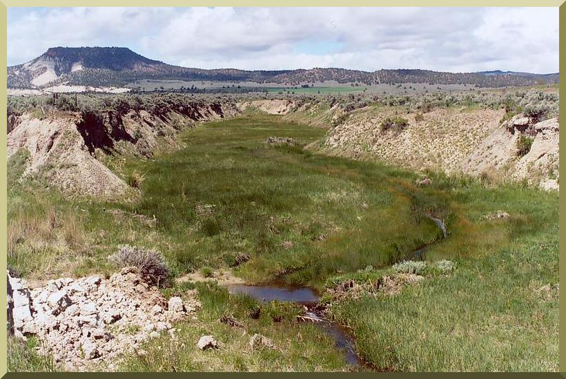 Camp Creek, near Prineville, Oregon, developed in the late 1800s due to overgrazing of the meadow.