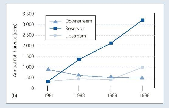 Historical fisheries productivity at Tucurui dam, Brazil.