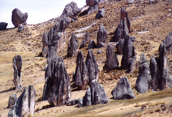 The Nuns, Rock Forest of Huayllay, Pasco, Peru.
