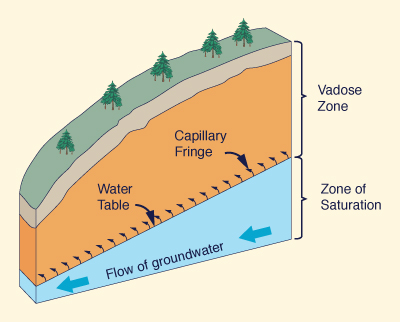 Vadose zone and zone of saturation.