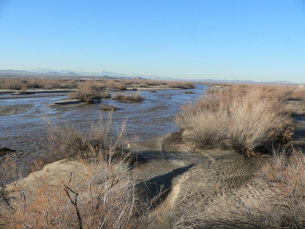 The Mohave river at Indian Trail, near Helendale, California