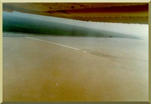 Amazon tidal wave, or pororoca, on the estuary of the Araguari river,Amapa, Brazil, at 8 am,  January 22, 1989. The pororoca coincides with new and full moons, and it is strongest during the equinoctial month