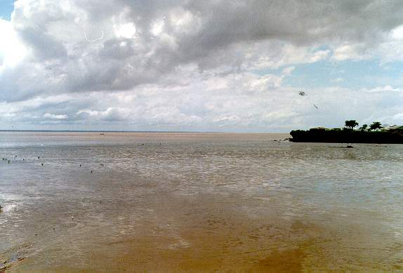 Mouth of the Amazon river at Macapa, Brazil.