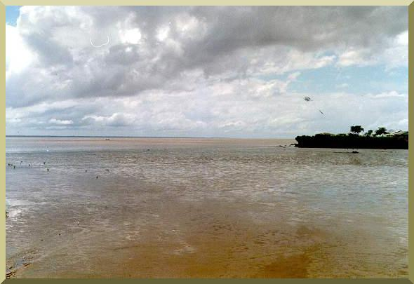 The Amazon river at its mouth in Macapa, Brazil