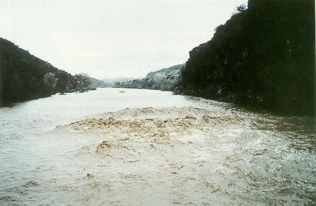 Surface wave on the Hassayampa river, near Morristown, Arizona, <br>during the flood of February 9, 1993