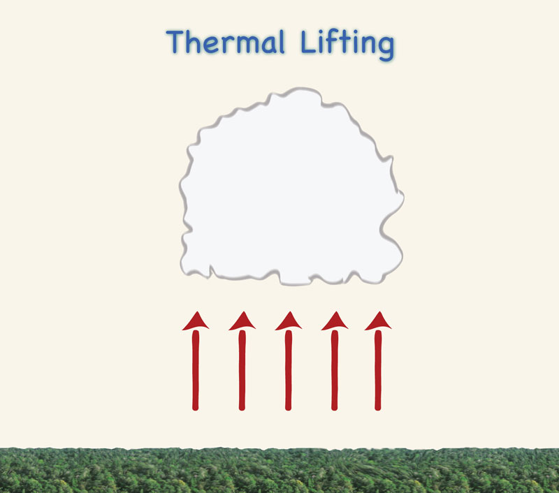 (d) thermal effects