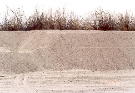 Vertical cut showing 2.3 m depth  of sand mining at El Barbon Wash, Baja California, February 23, 2002.