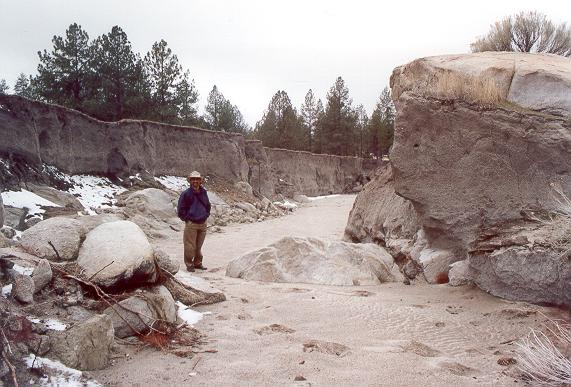 A. V. Shetty standing inside gully which developed in Rancho Las Cuevitas, in the Sierra Juarez, during 1992 flood