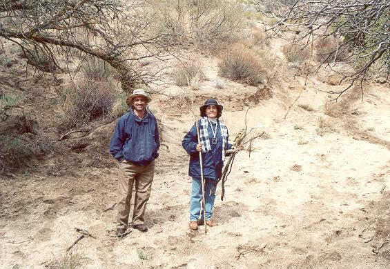 Shetty and botanist Alicia Venegas inspecting a tributary wash of Arroyo San Salvador, Sierra Juarez, Baja California, March 16, 2002.