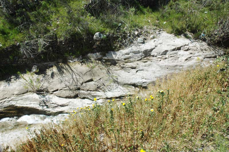 Downcutting to bedrock as a result of 'hungry water' downstream of a sediment retention basin,Aguaje de La Tuna
