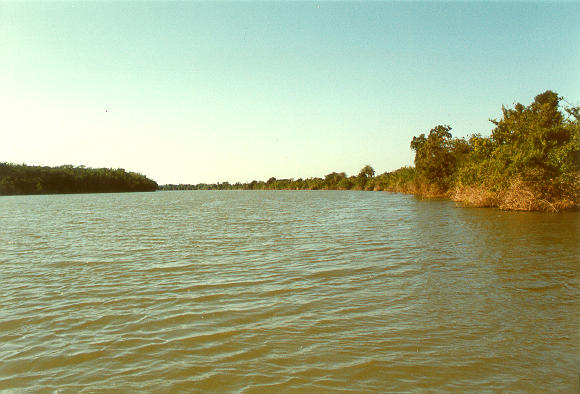 Rio Apa, on the border between Brazil and Paraguay (1992).