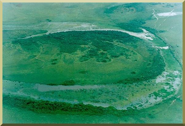 An ancient oxbow lake in the flood plain of the Rio Meta, Meta department, Eastern Colombia