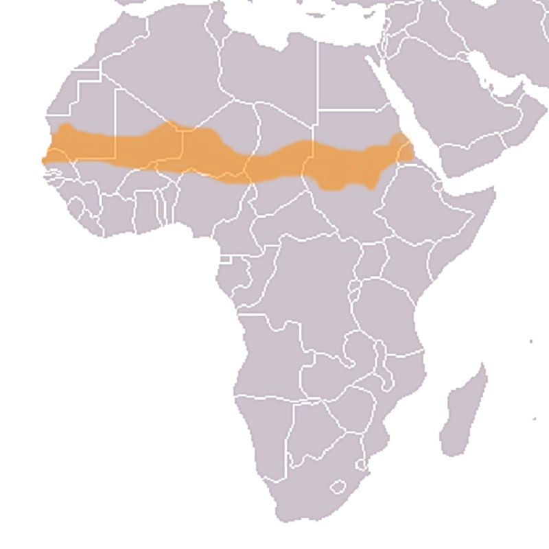 sahel map of africa The Sahel