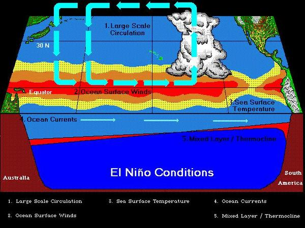 Non-El Ni�o conditions along the tropical Pacific Ocean
