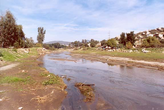 tecate creek