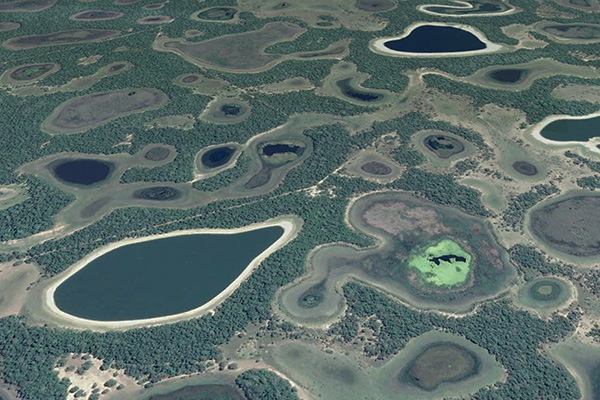Salt ponds in the Pantanal of Mato Grosso, Brazil.
