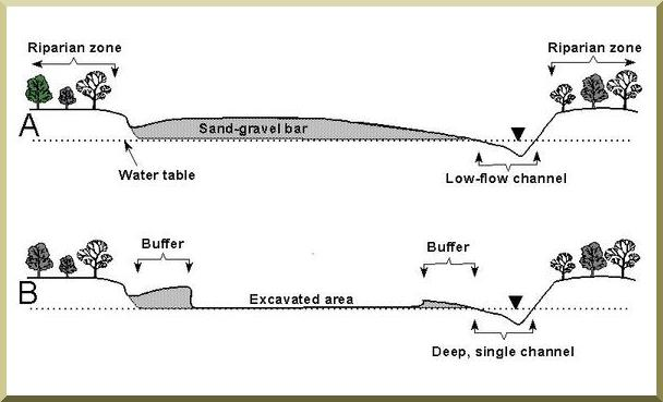 Diagram of channel cross sections showing a typical sand-gravel bar and the protected deep, single channel