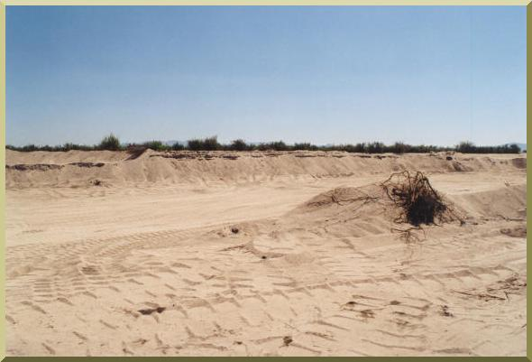 Sand Mining in El Barbon Wash near Real del Castillo